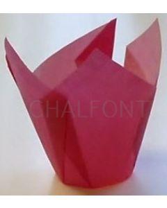Tulip cases - Single Colour