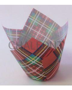 Tulip cases -Tartan Design